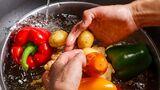 Obst und Gemüse sollte immer mit Wasser gewaschen werden