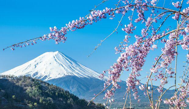 Reisetipp – Japan richtig erleben