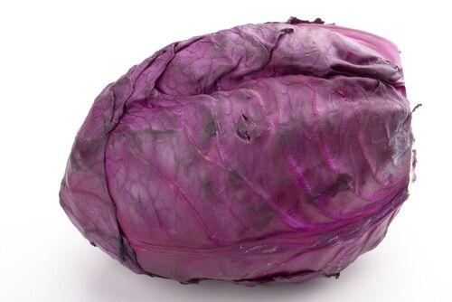 Rotkohl enthält 1,7 Milligramm Vitamin E pro 100 Gramm