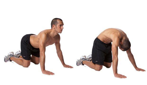Rückenmobilisieren im Vierfüsslerstand