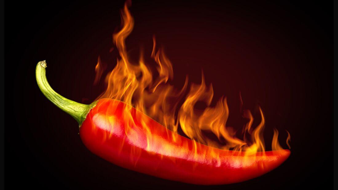 Scharfes Essen macht Ihren Pfunden Feuer unterm Hintern