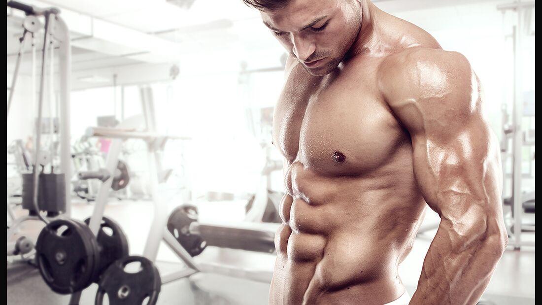 Seitliche Bauchmuskeln definieren