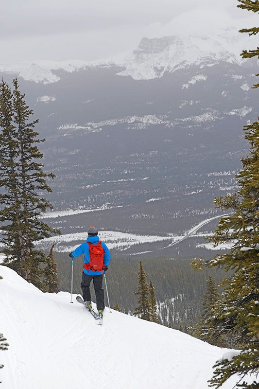 Skifahren in Kanada: 6 Monate Winter, leere Pisten, feinster Pulverschnee