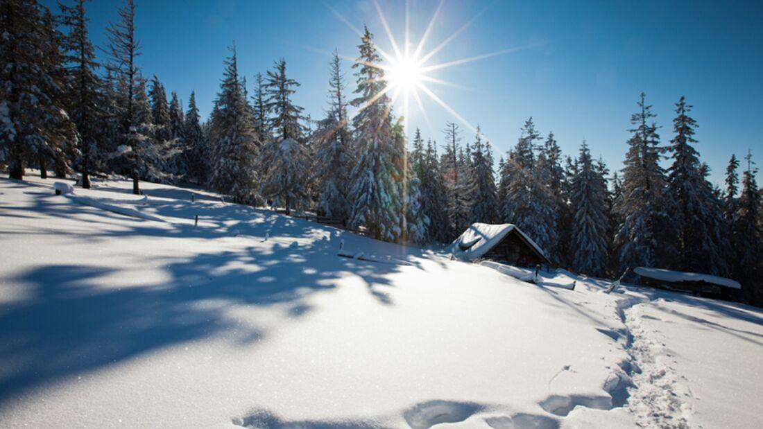 Skiwetter wie man es sich wünscht