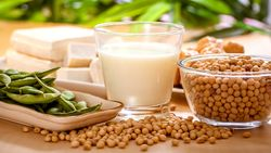 Sojaprodukte sind rein pflanzlich und Bestandteil der vegane Küche