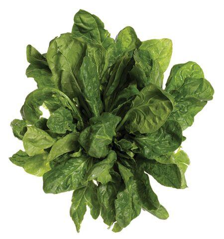Spinat enthält 1,4 Milligramm Vitamin E pro 100 Gramm