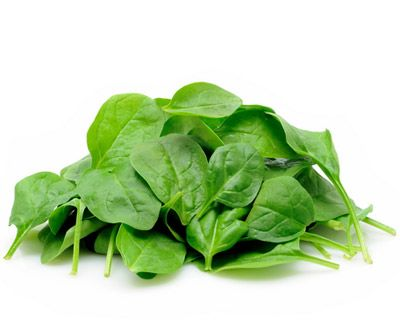 Spinat enthält 145 Mikrogramm Folsäure pro 100 Gramm