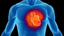 Starke Luftverschmutzung führt oftmals zu erhöhtem Blutdruck