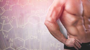 Testosteron sorgt für Muskelkraft und Männlichkeit.