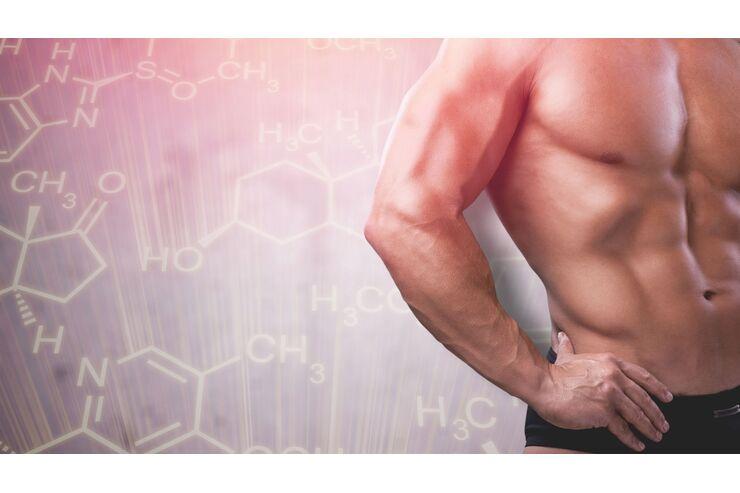 sex hormone bei männern