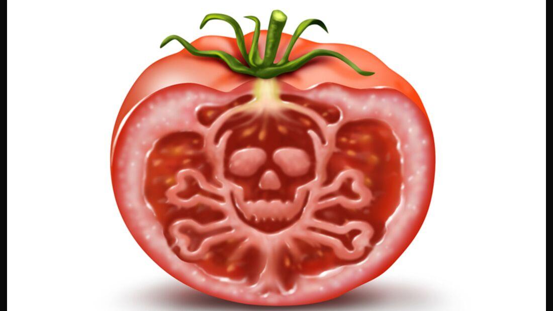 Tomaten können giftiges Solanin enthalten
