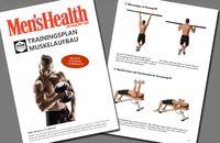 Trainingsplan: Muskelaufbau in 12 Wochen
