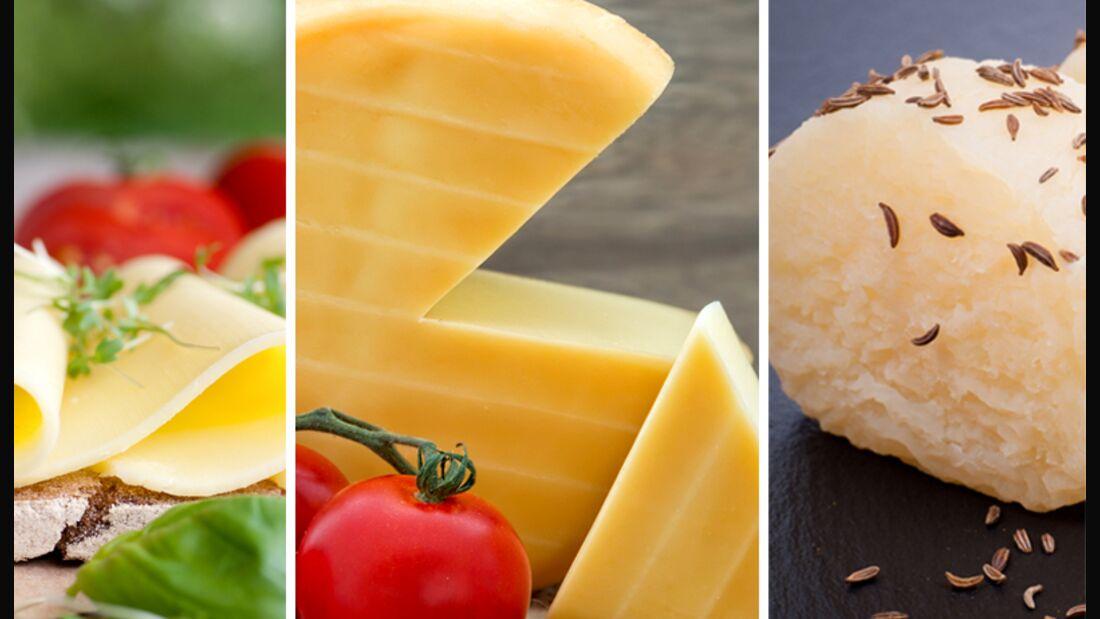 Unsere Top 10 der eiweißreichen Käsesorten. Und Platz 1 geht an ...