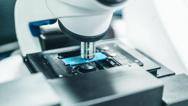 Untersuchung der Spermienqualität unter dem Mikroskop
