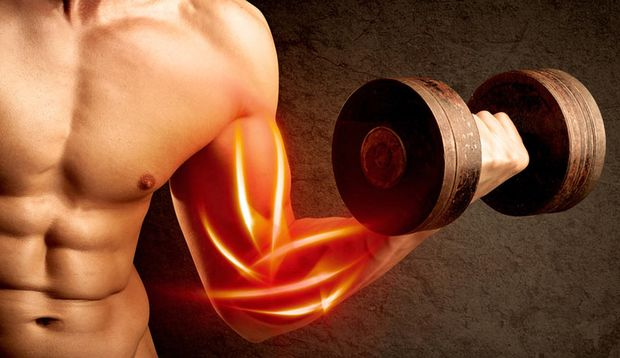 Während manche selbst nach hartem Training kaum Muskelkater bekommen, haben andere schon Schmerzen, sobald Sie eine Hantel nur angucken