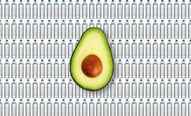 Wasserflaschen Avocado