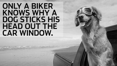 Weisheiten von und für Biker