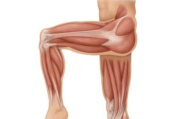Workout-Booster für die Beinmuskeln