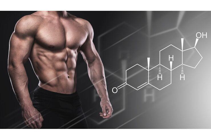 Wird Testosteron mich Fett verlieren lassen